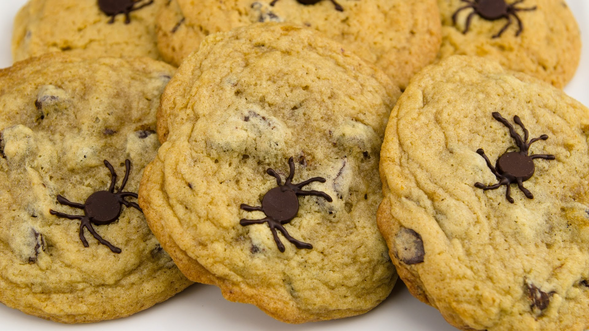 You Won't Believe How Simple It Is To Create These Chocolate Spider Cookies